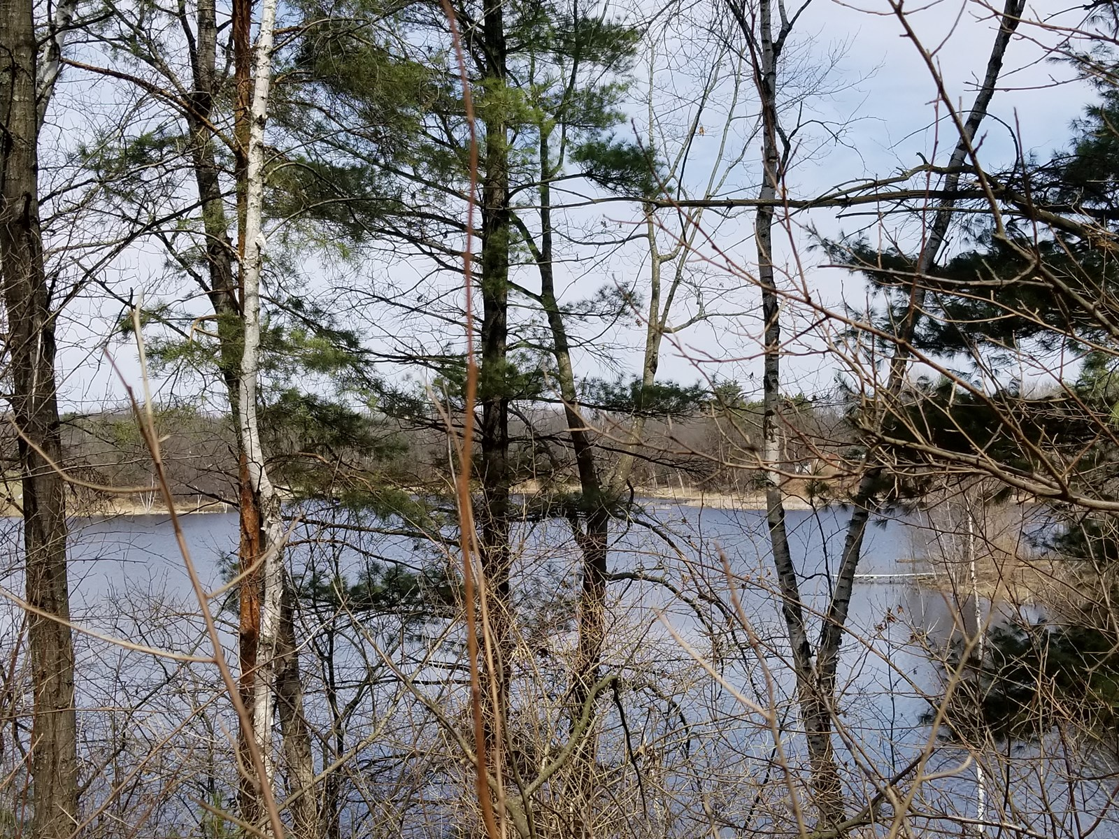 Vacant Land for Sale on Old Taylor Lake in Waupaca WI