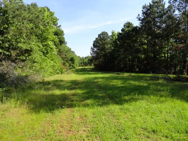 East Texas Land for Sale, Jacksonville, TX
