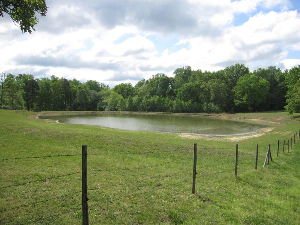 AUCTION! 102 AC CATTLE FARM Birch Creek Acres In Southern VA