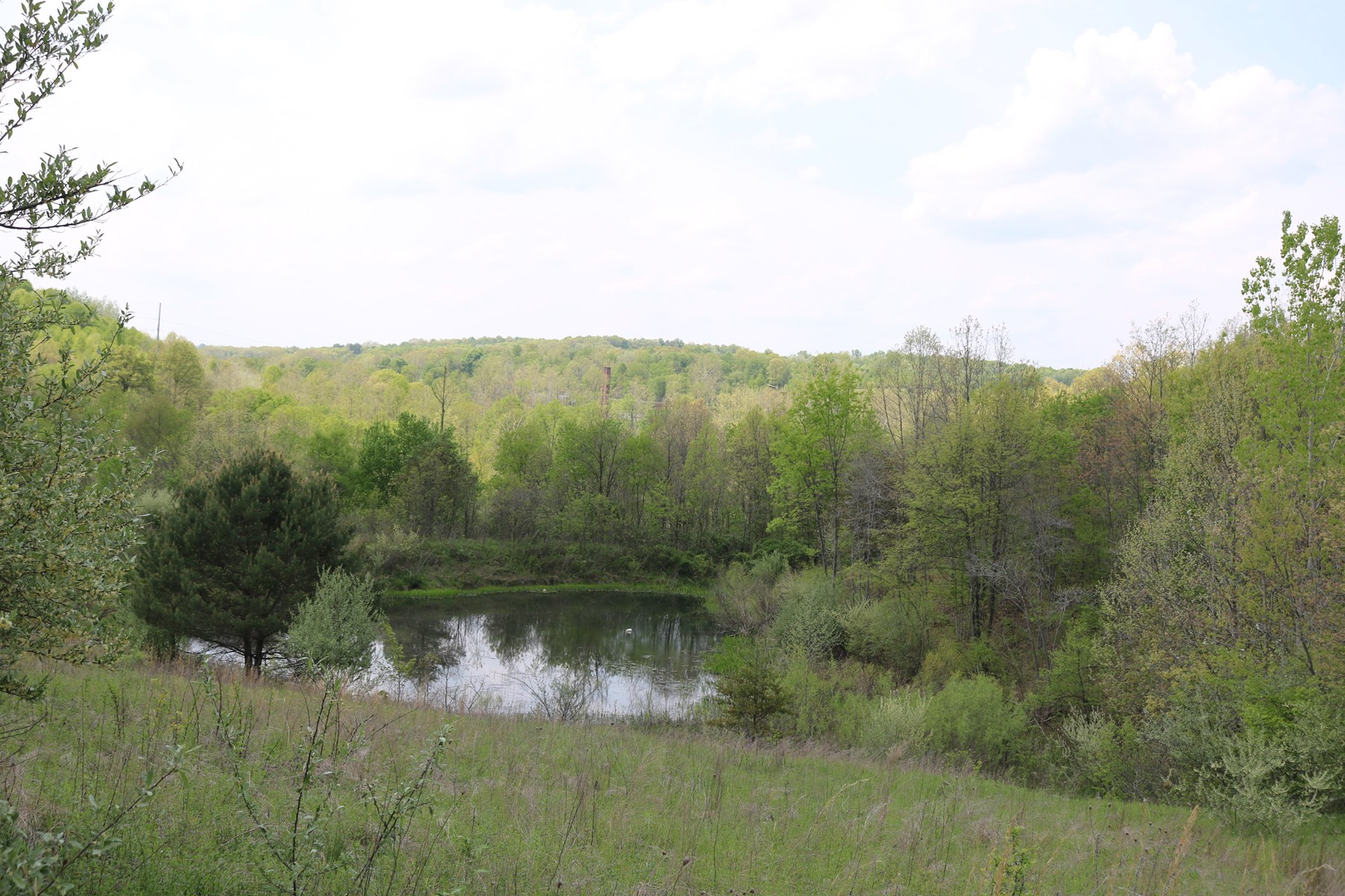 Vinton County, Ohio Acreage with Small Ranch Home For Sale