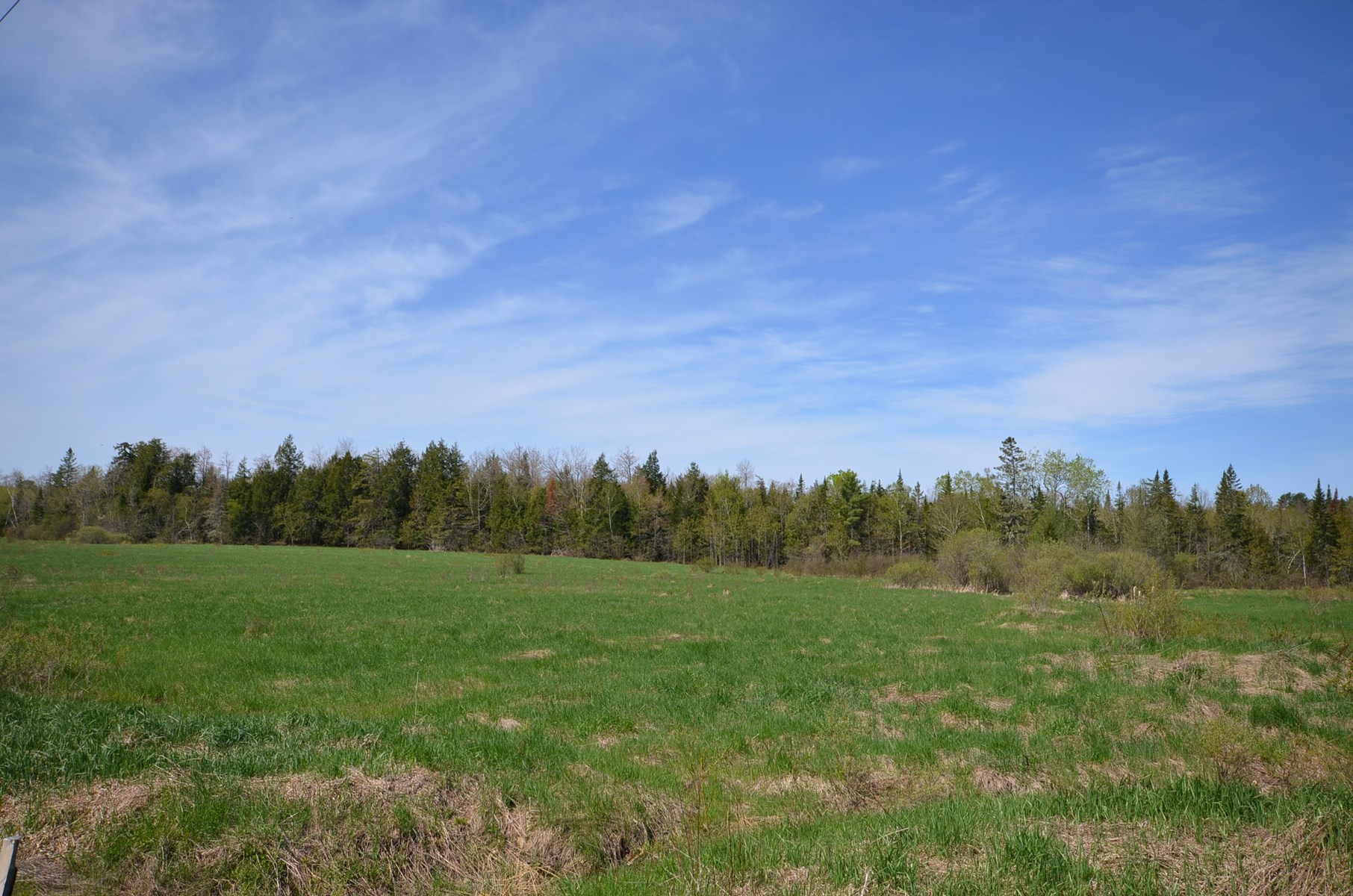 Maine Land for Sale in Levant