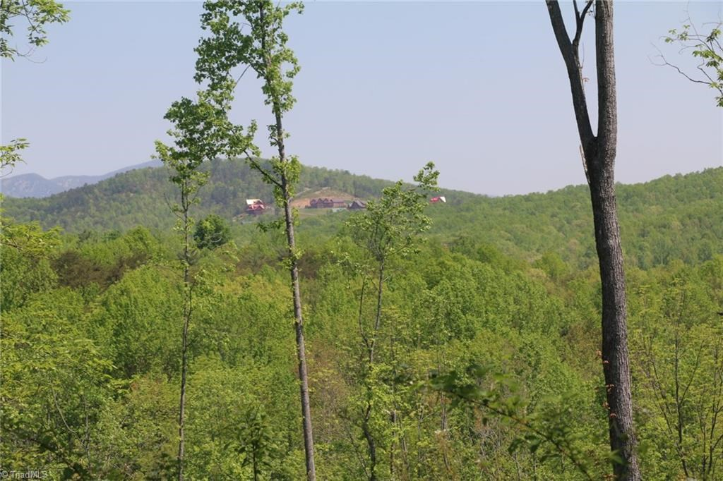 Land for sale in Dobson NC