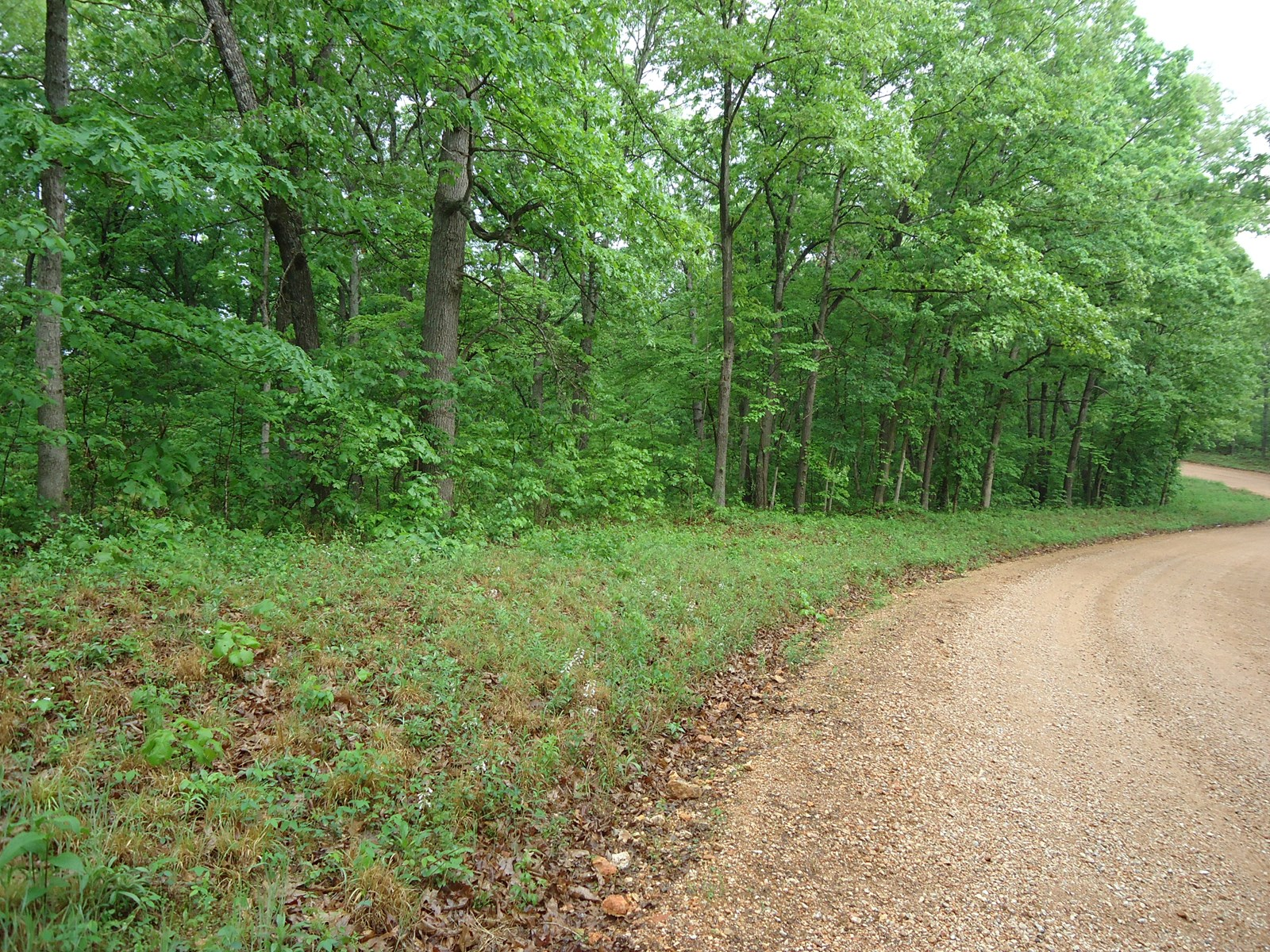 5 +/- Acres of Vacant Land for Sale Near Lake of the Ozarks