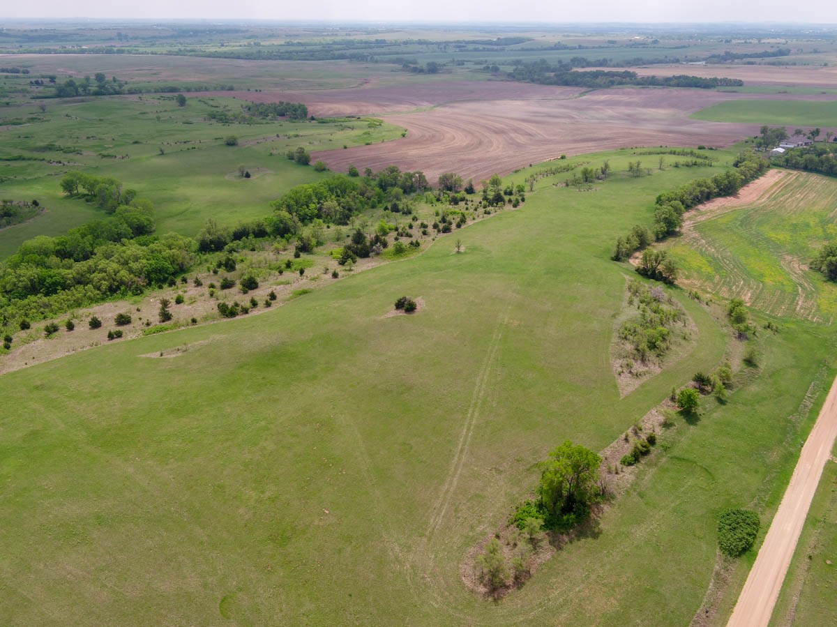 Pasture and Tillable Farmland in Saline County Kansas For Sale at Auction