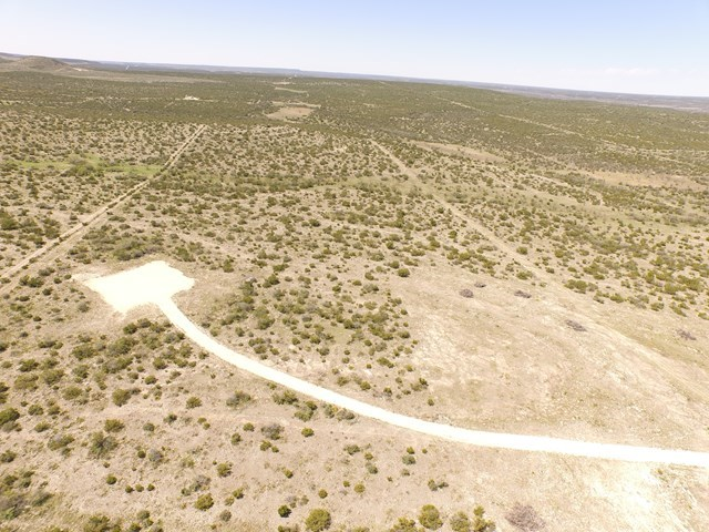 50.118 ACRE HOME SITE ON BULL RUN IN IRION COUNTY, TEXAS