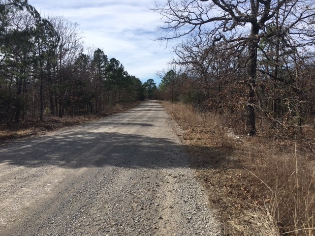 Hunting Land for sale Latimer  County- Wilburton, OK