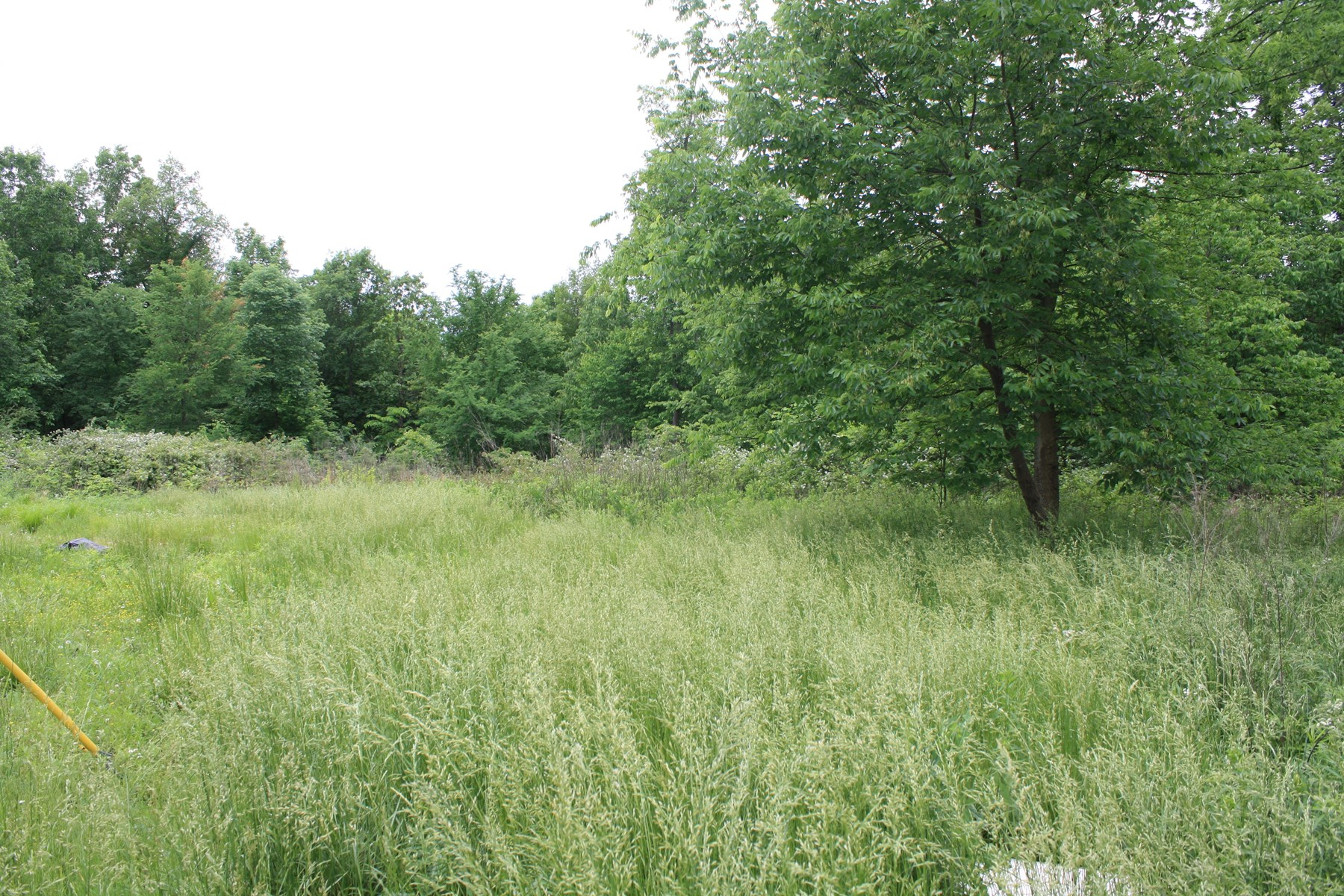 Wappapello Missouri Recreational Land For Sale 6 17 Acres