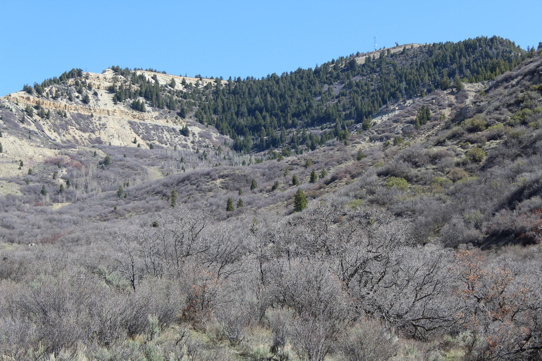 High Lonesome Land Auction Colorado No Reserve