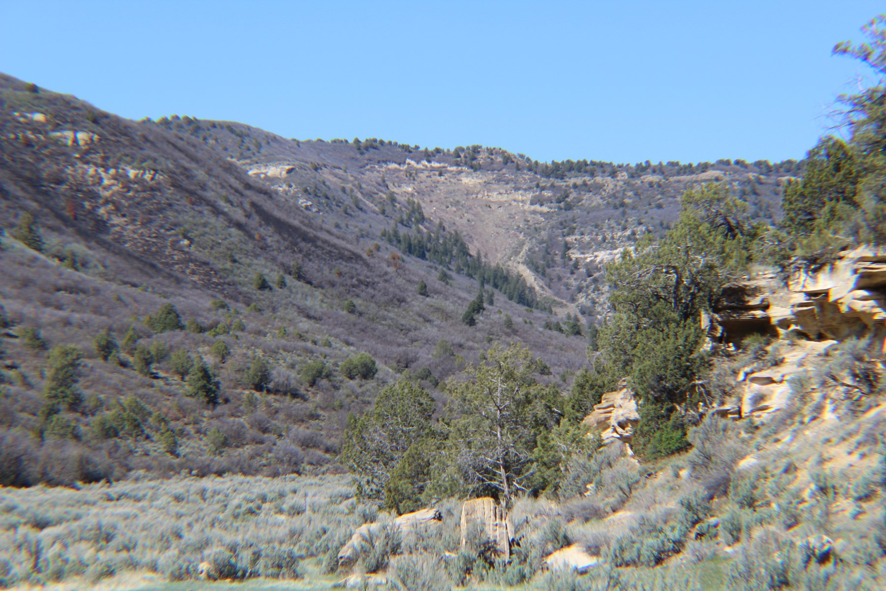 High Lonesome Land Auction No Reserve 320 Acres