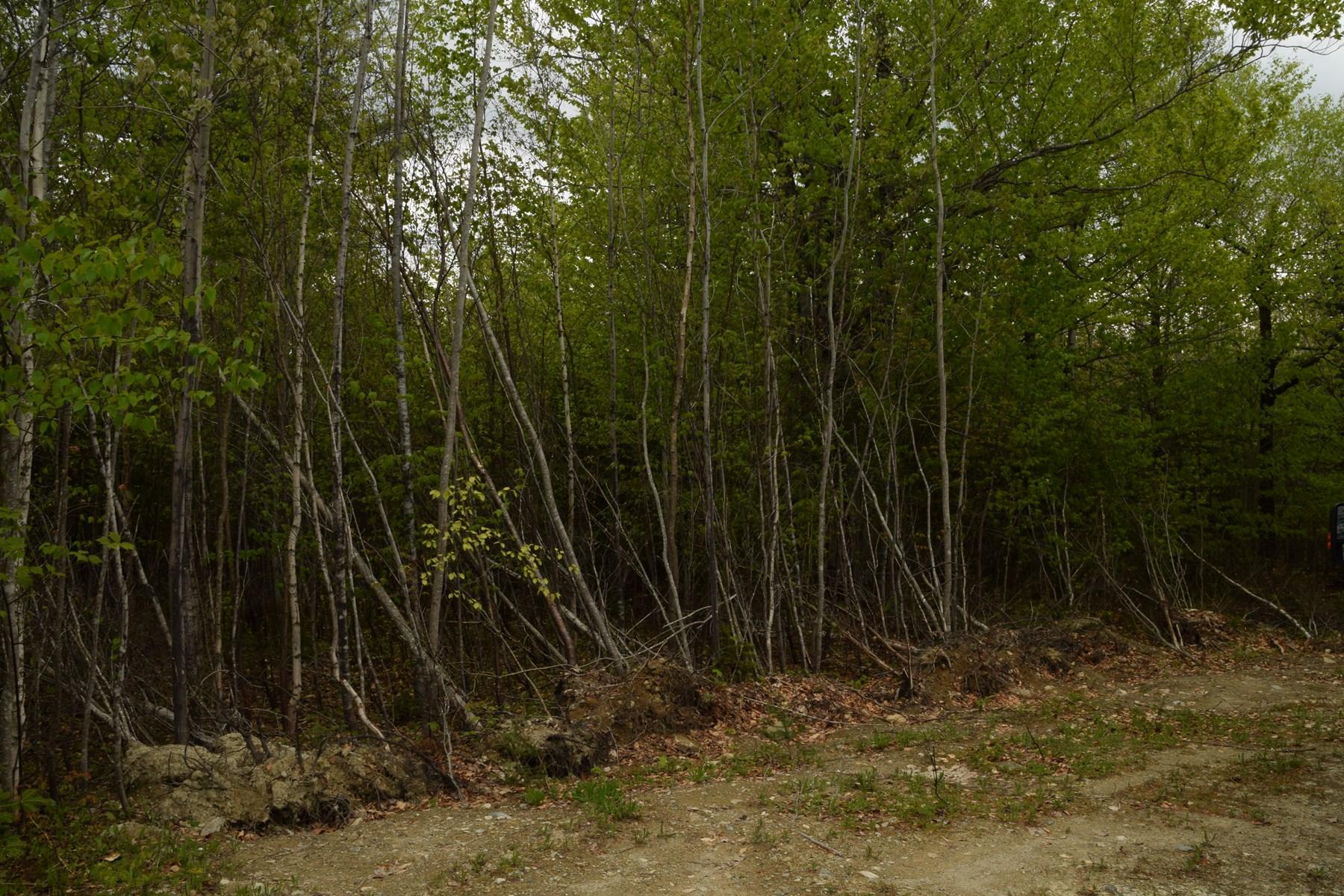 Maine Land for Sale in Burlington