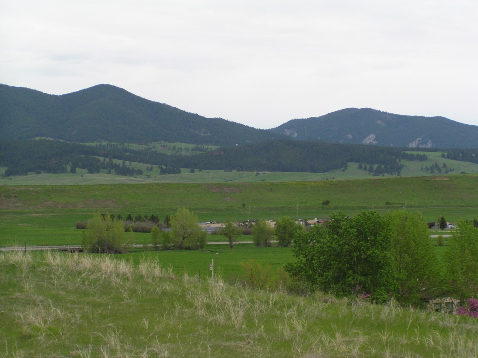 Central Montana Land for Sale - Build Your Dream Home