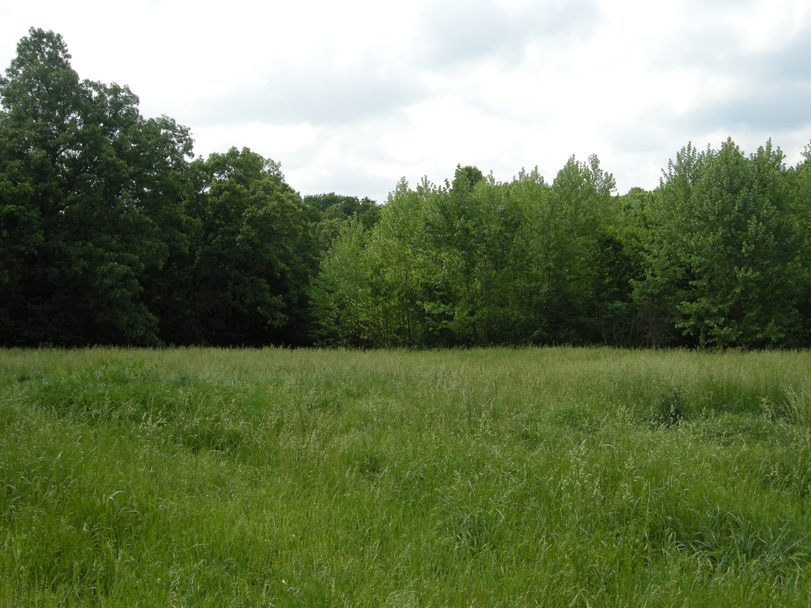 Northwest Arkansas 1.48 Acre Lot For Sale in Golf Community