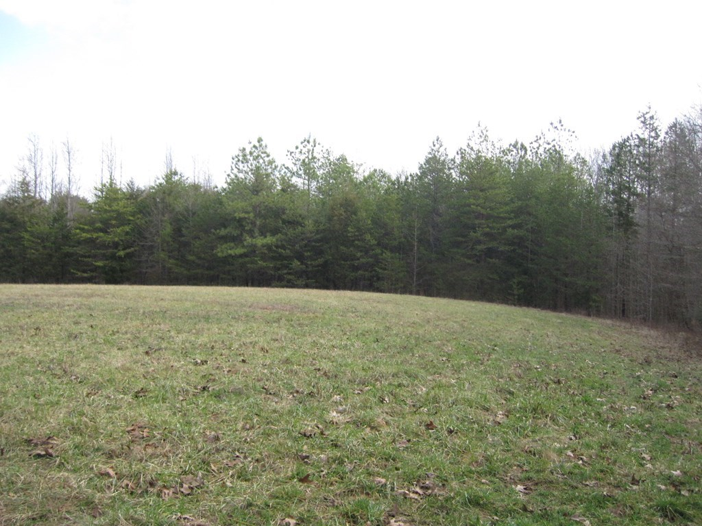 190 Acres Mecklenburg County Virginia
