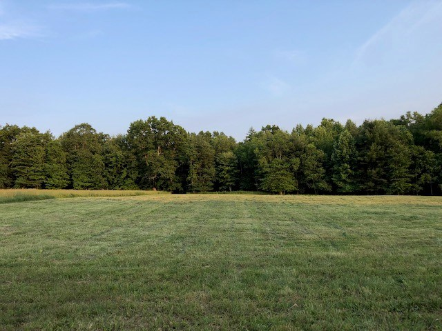 Farm Land with Water for Sale in Floyd VA!