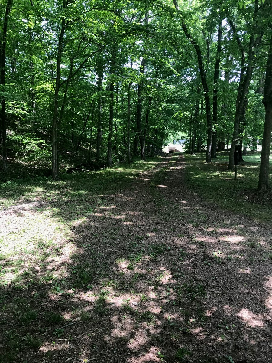 Vacant Land in Tennessee For Sale