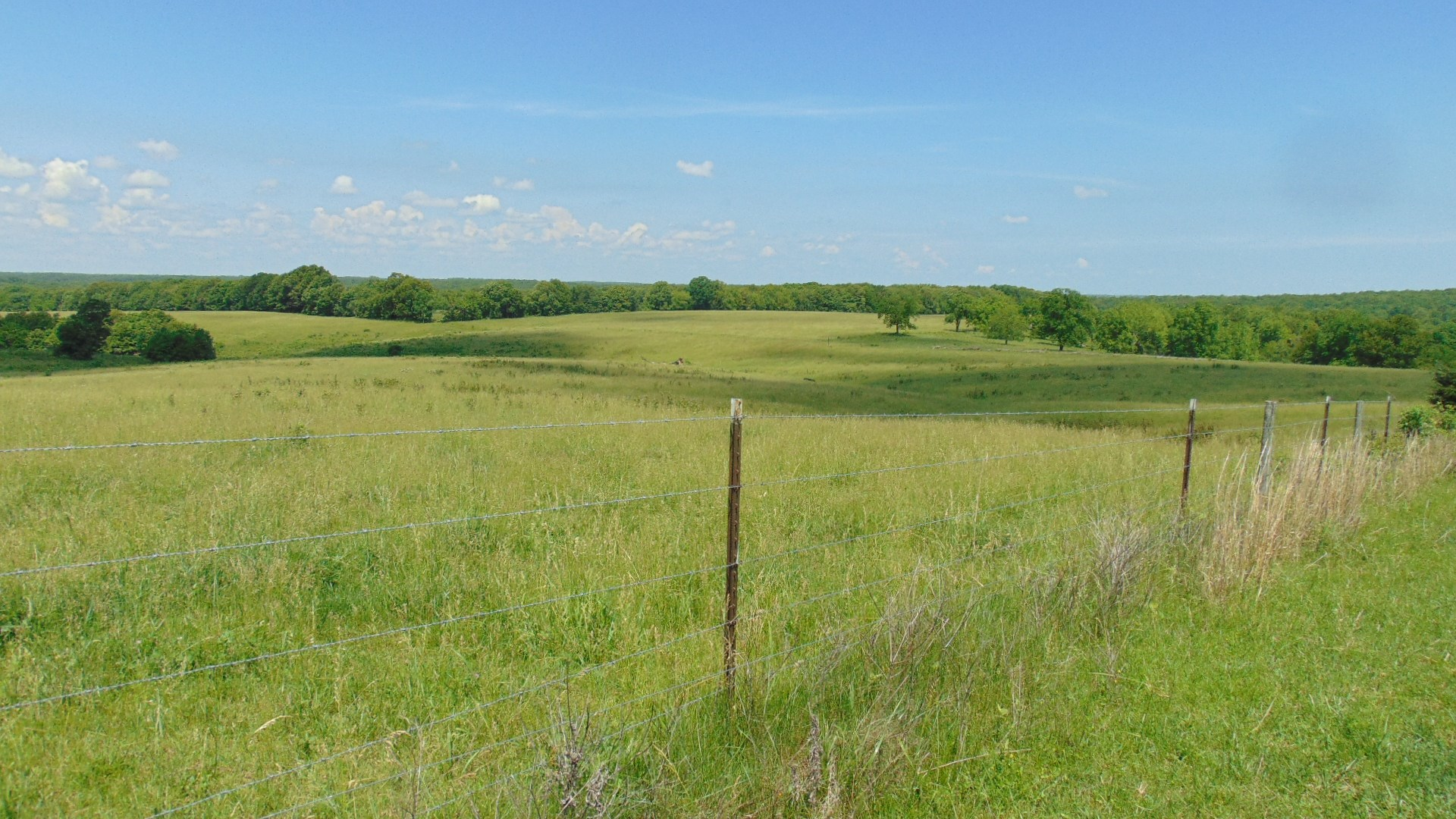 Cattle Ranch In South Central Missouri For Sale