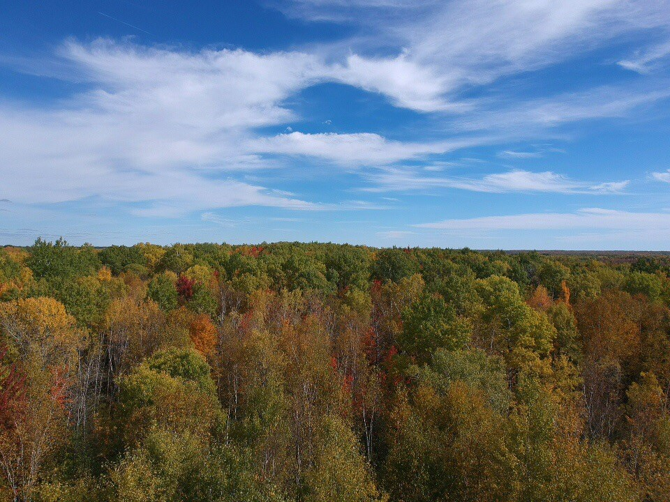 Land for sale Hinckley Mn wooded hunting 10 ac.Pine County