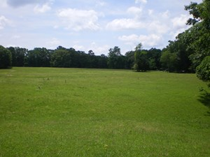 FARM LAND FOR SALE HARDIN COUNTY ROW CROP, HORSES OR CATTLE