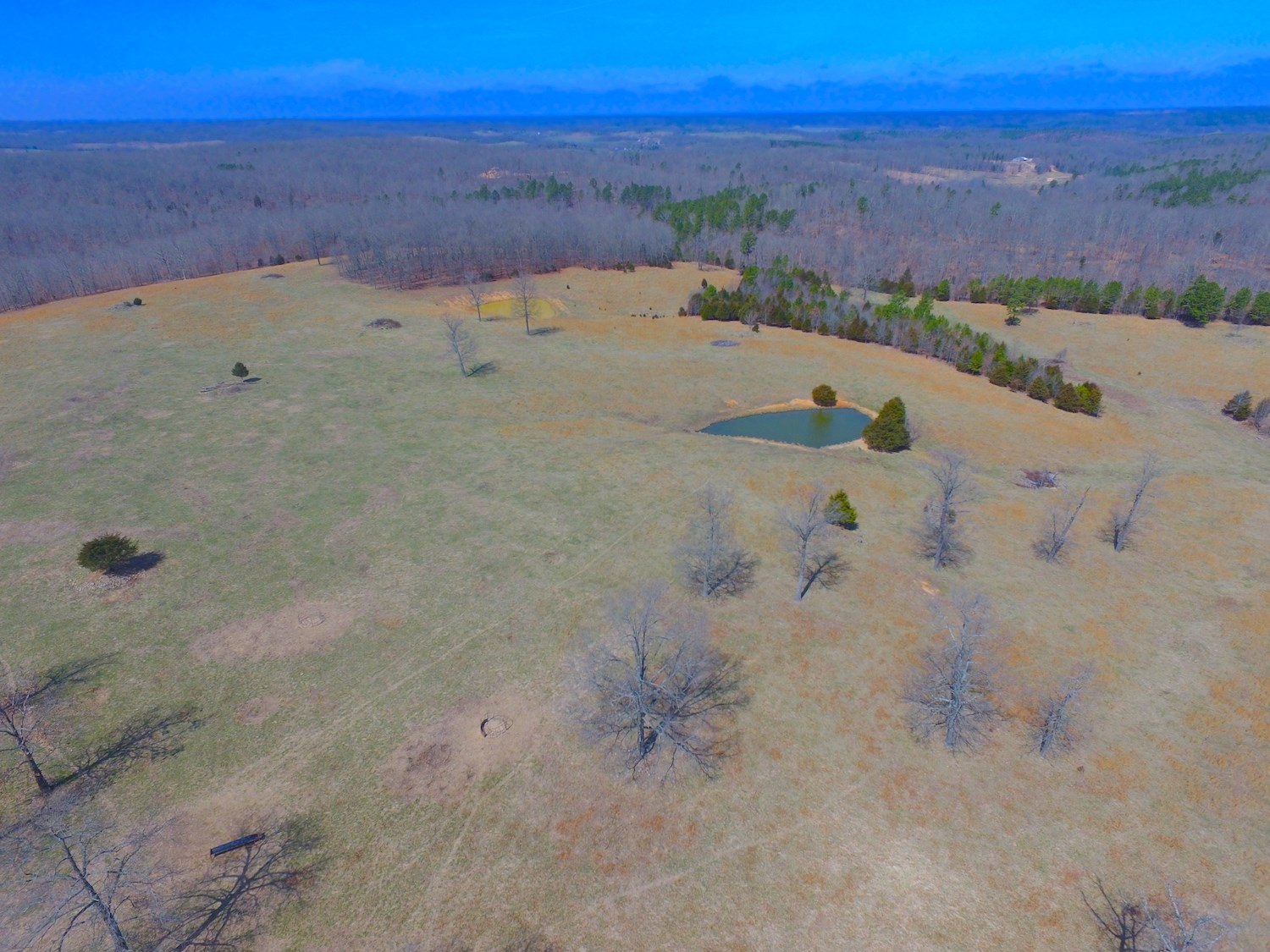 Pasture Land For Sale Near Alton, Missouri