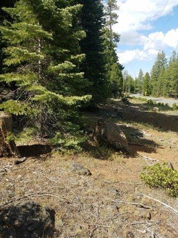 Recreational Land .96 Acres in Northeastern CA.