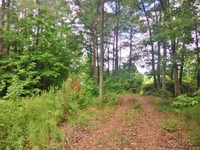 Land for Sale Western Pike County MS