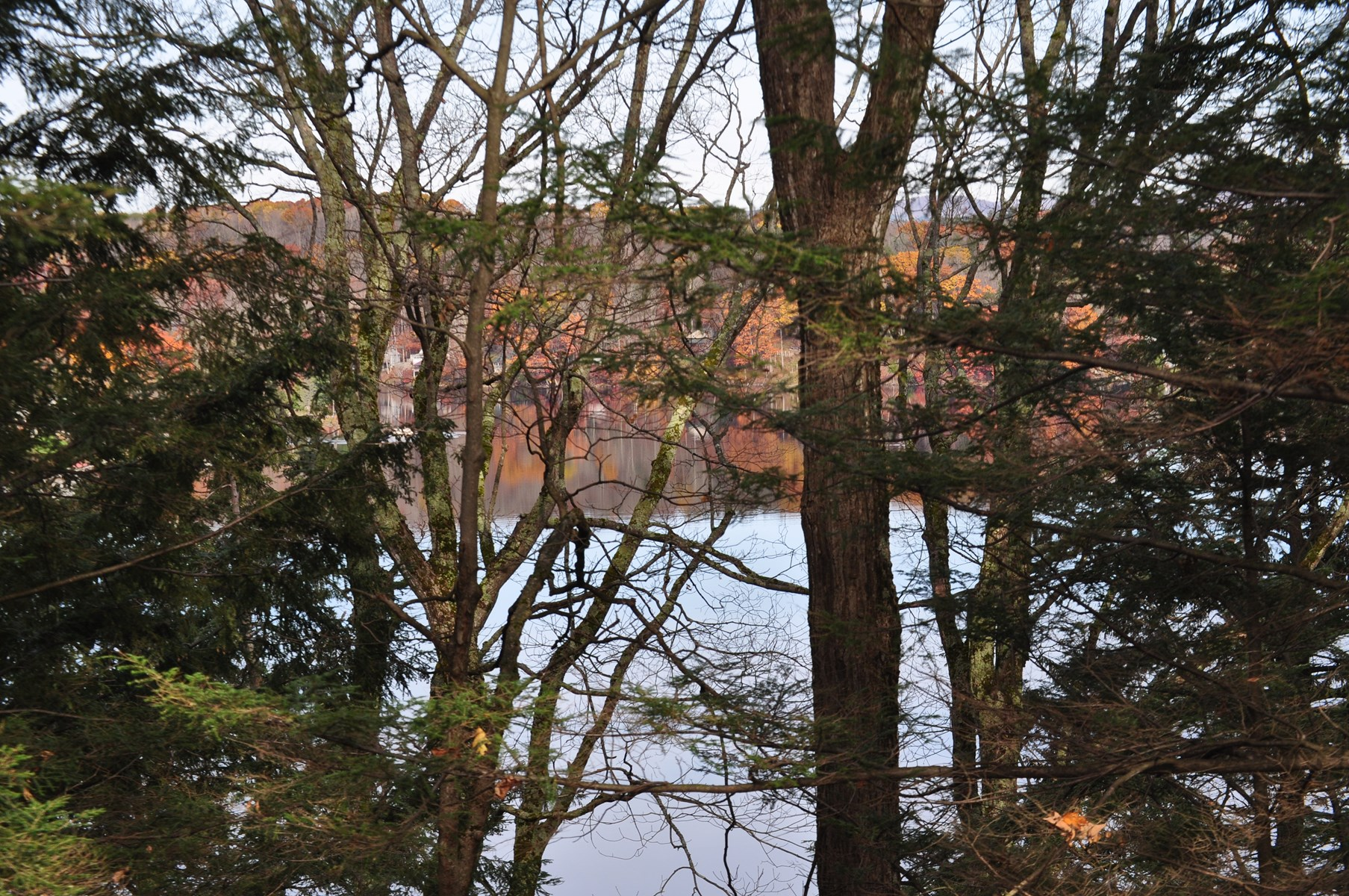 Central New York land for sale