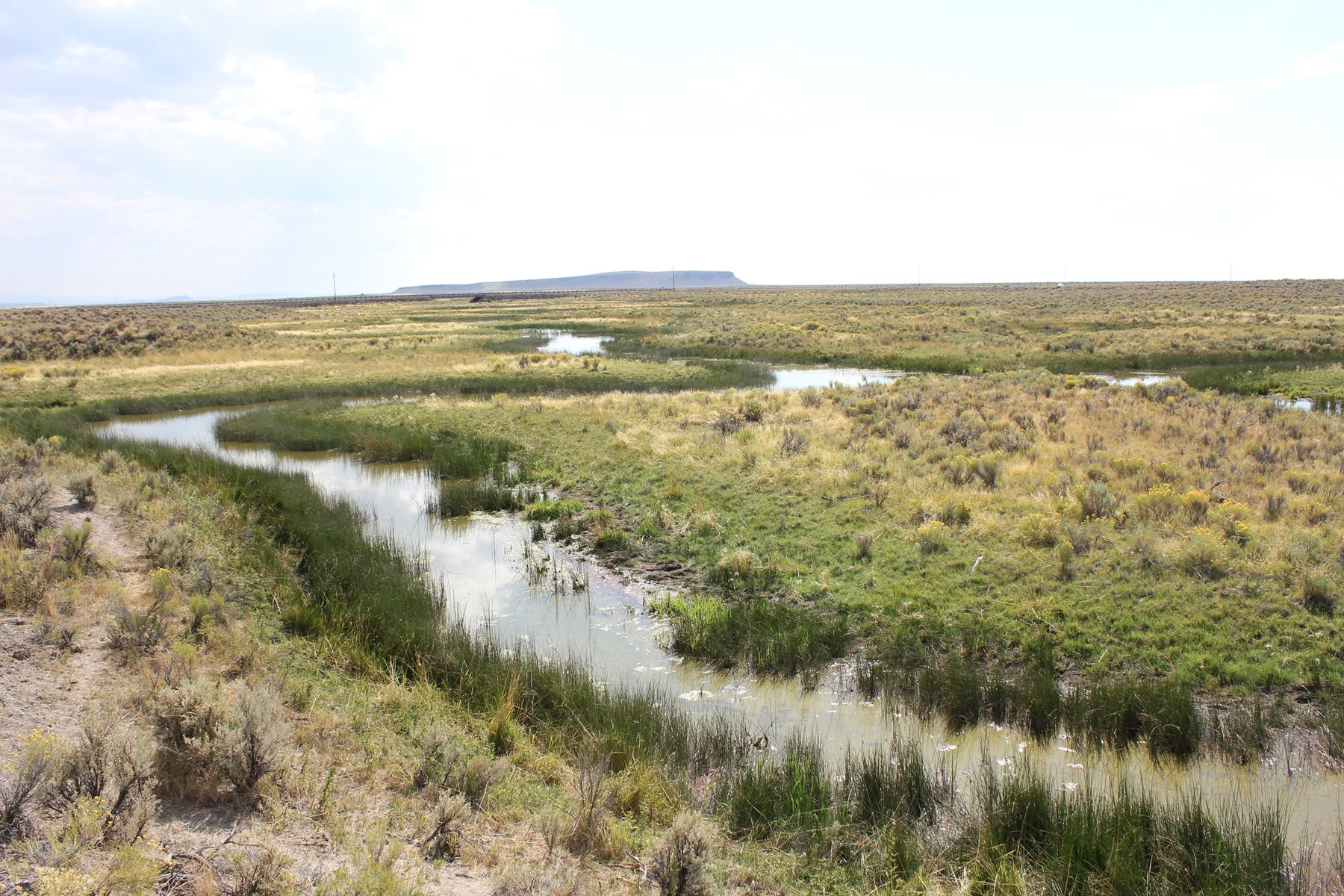 MALHEUR SLOUGH PROPERTY FOR SALE IN BURNS