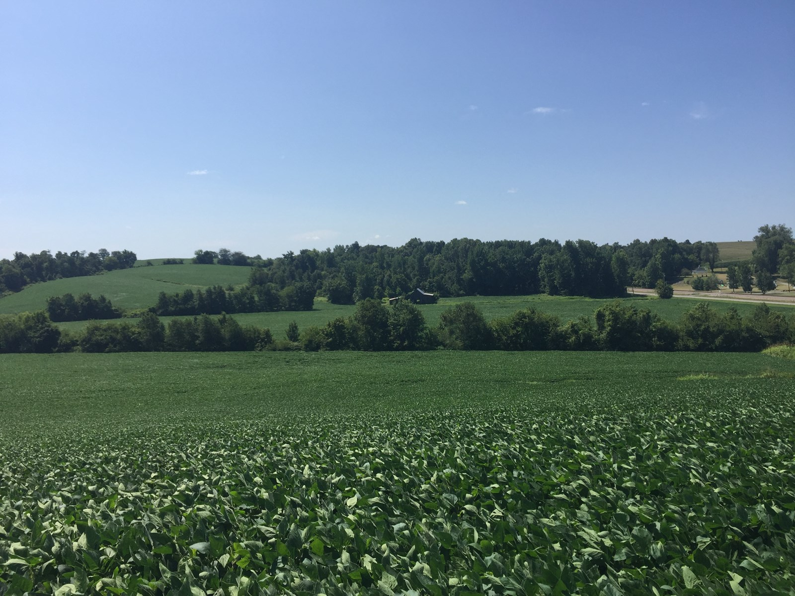 Farm for Sale in Kentucky Online Only Auction