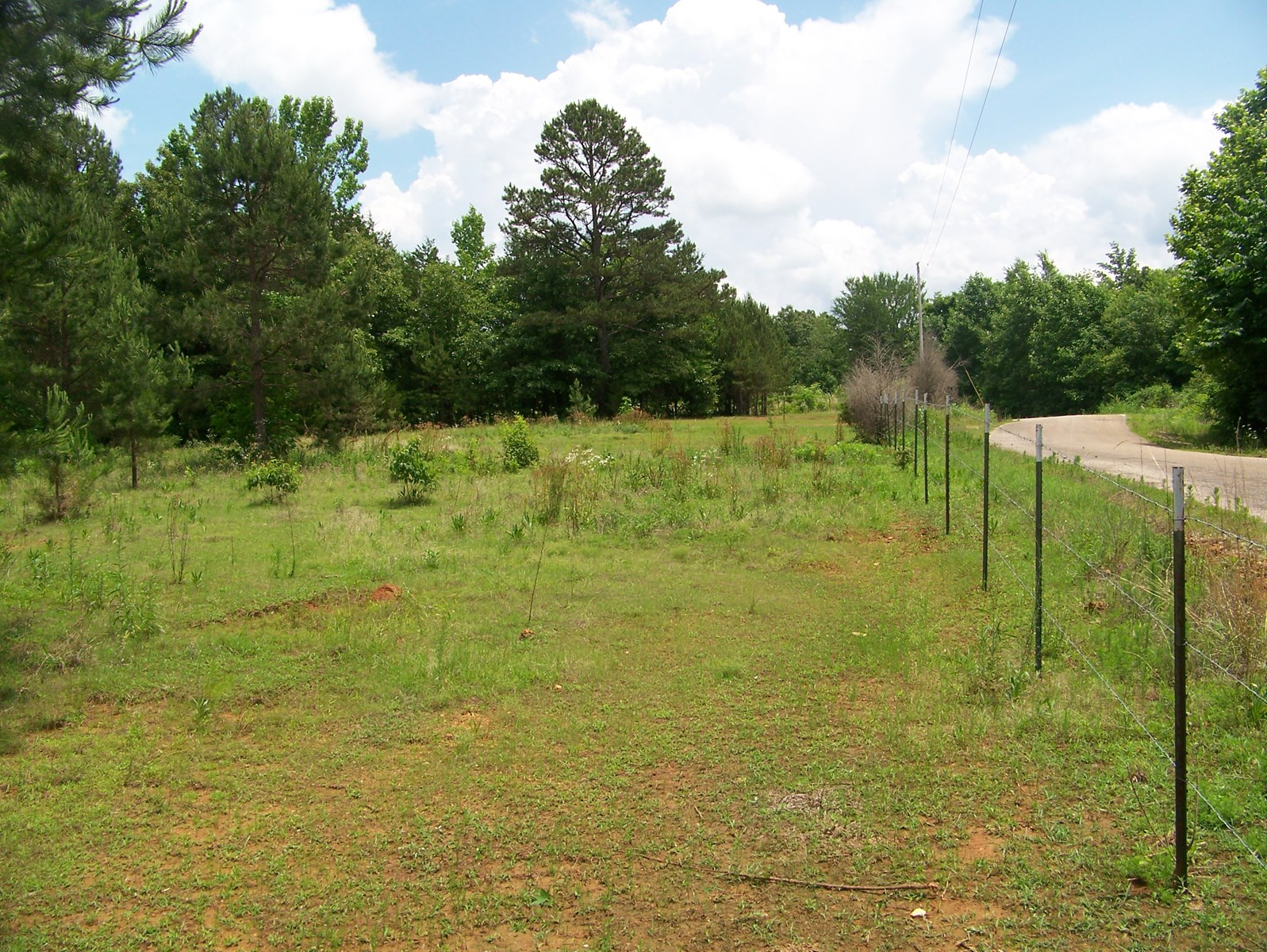 5AC OF TN LAND FOR SALE READY FOR COUNTRY HOME OR MINI-FARM