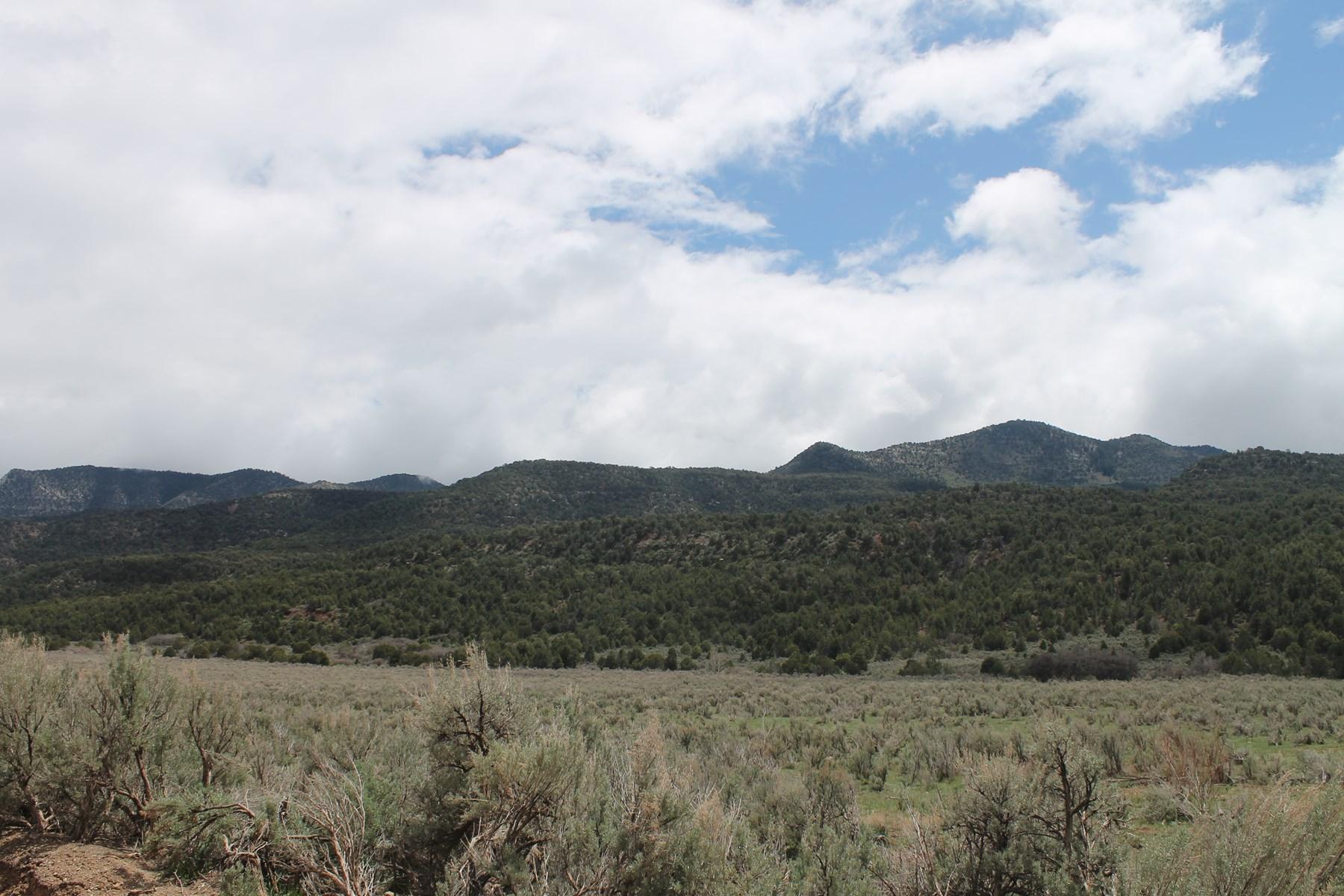 High Lonesome Colorado  Land Auction Debeque NO RESERVE