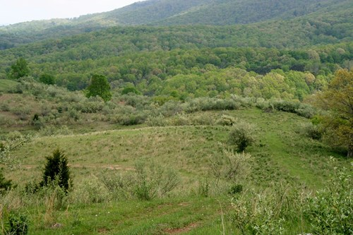 Land with small farm house for sale in Highland County VA