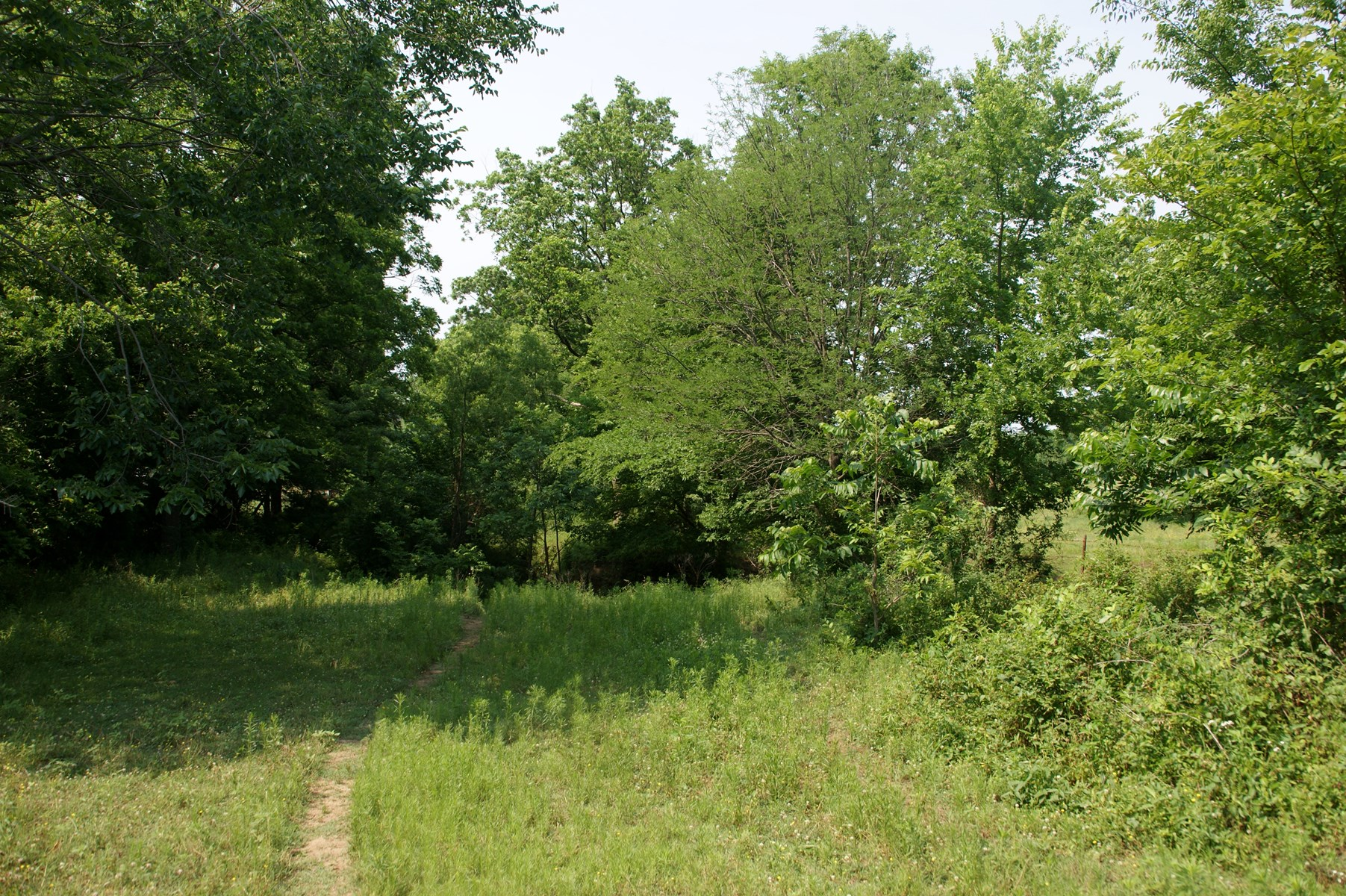 Country residential building site! Prime rural acreage!