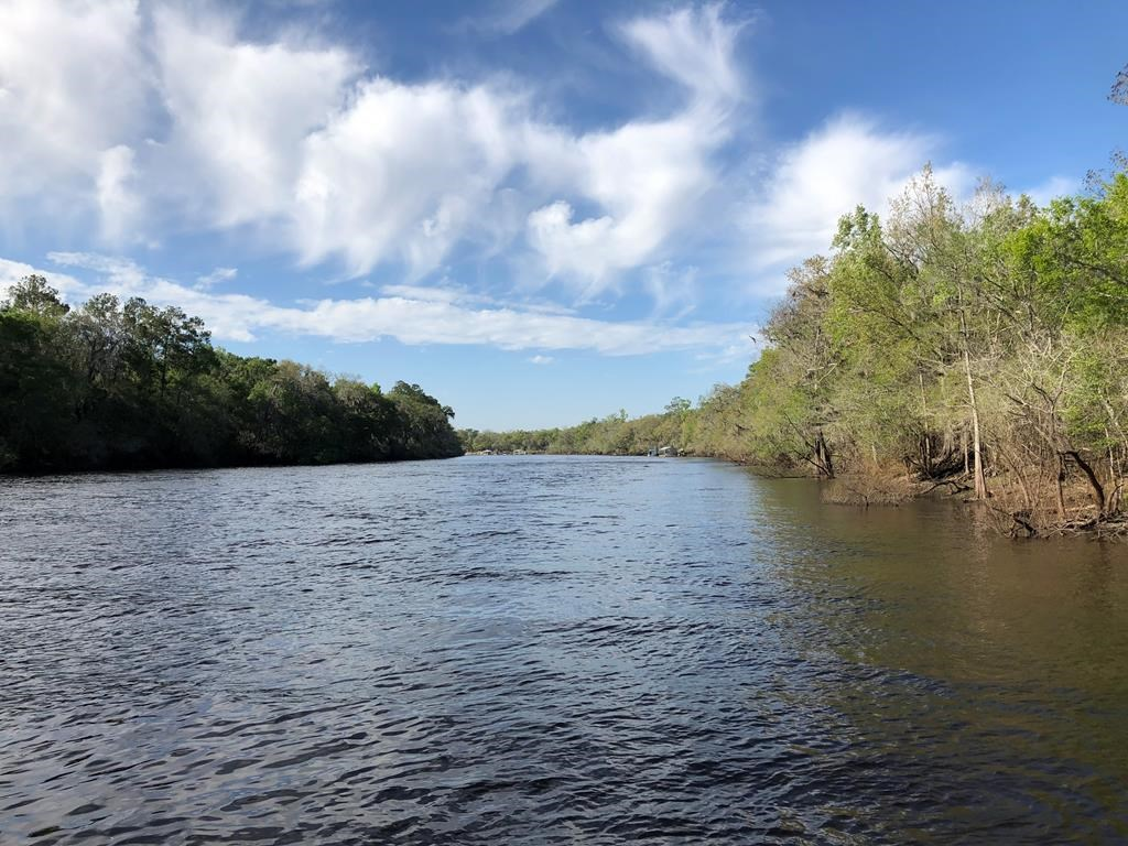 RIVERFRONT PROPERTY ON SUWANNEE RIVER - Bell, FL