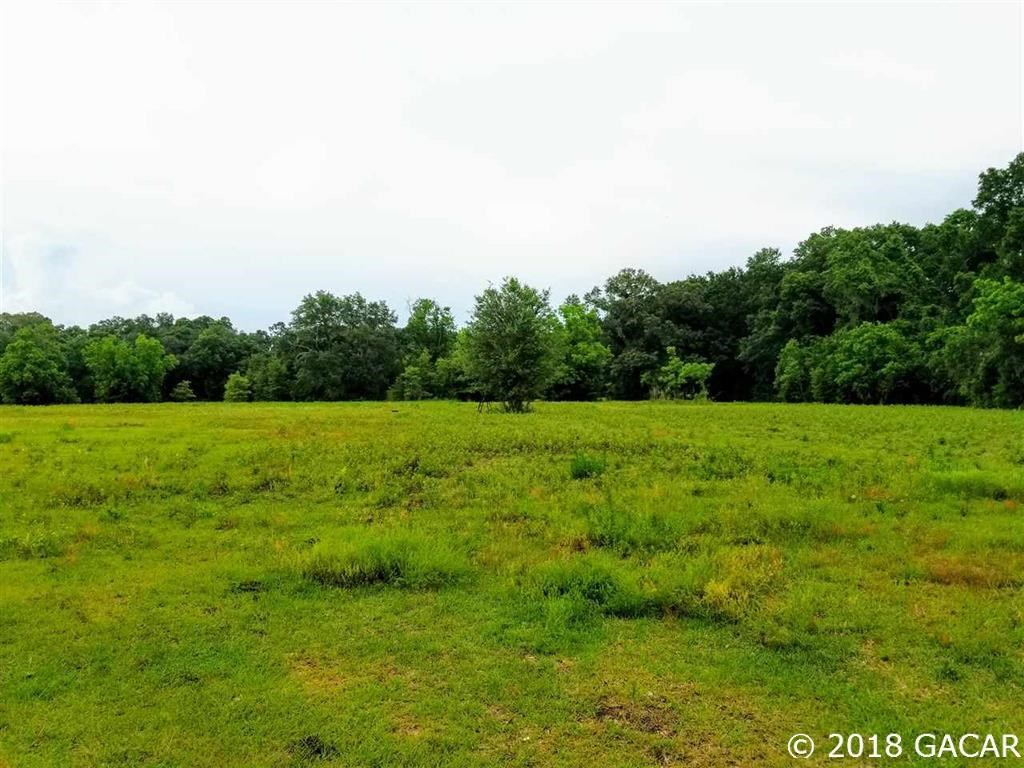 PASTURE LAND IN ALACHUA FLORIDA