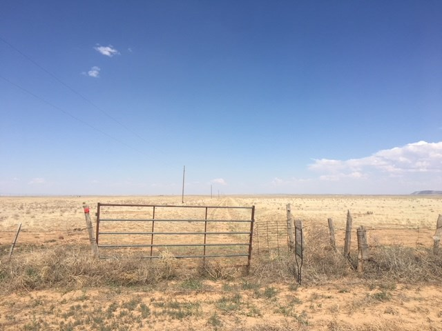 Grassland for Grazing For Sale near Mountainair New Mexico