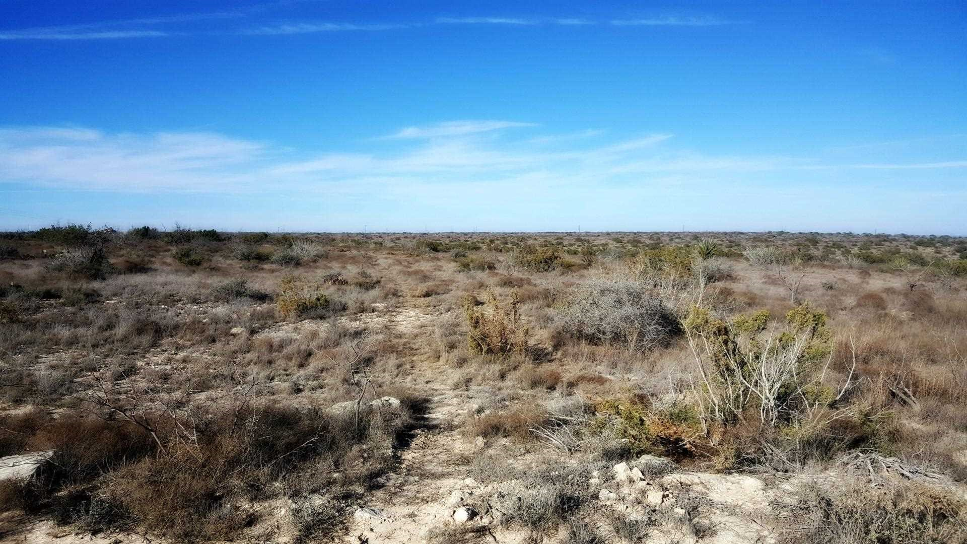 Vacant Commercial land for sale in Reagan County