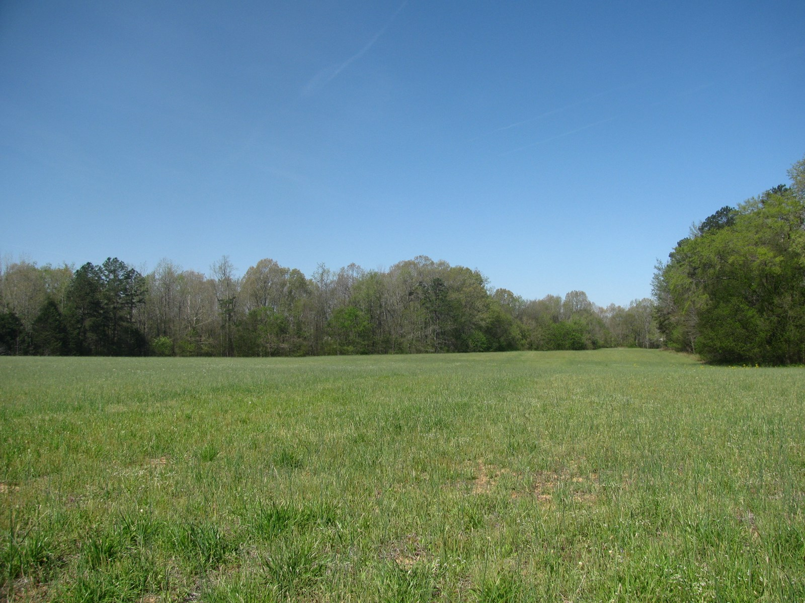 ROW CROP LAND WITH WATERFRONT LAND FOR SALE IN TN