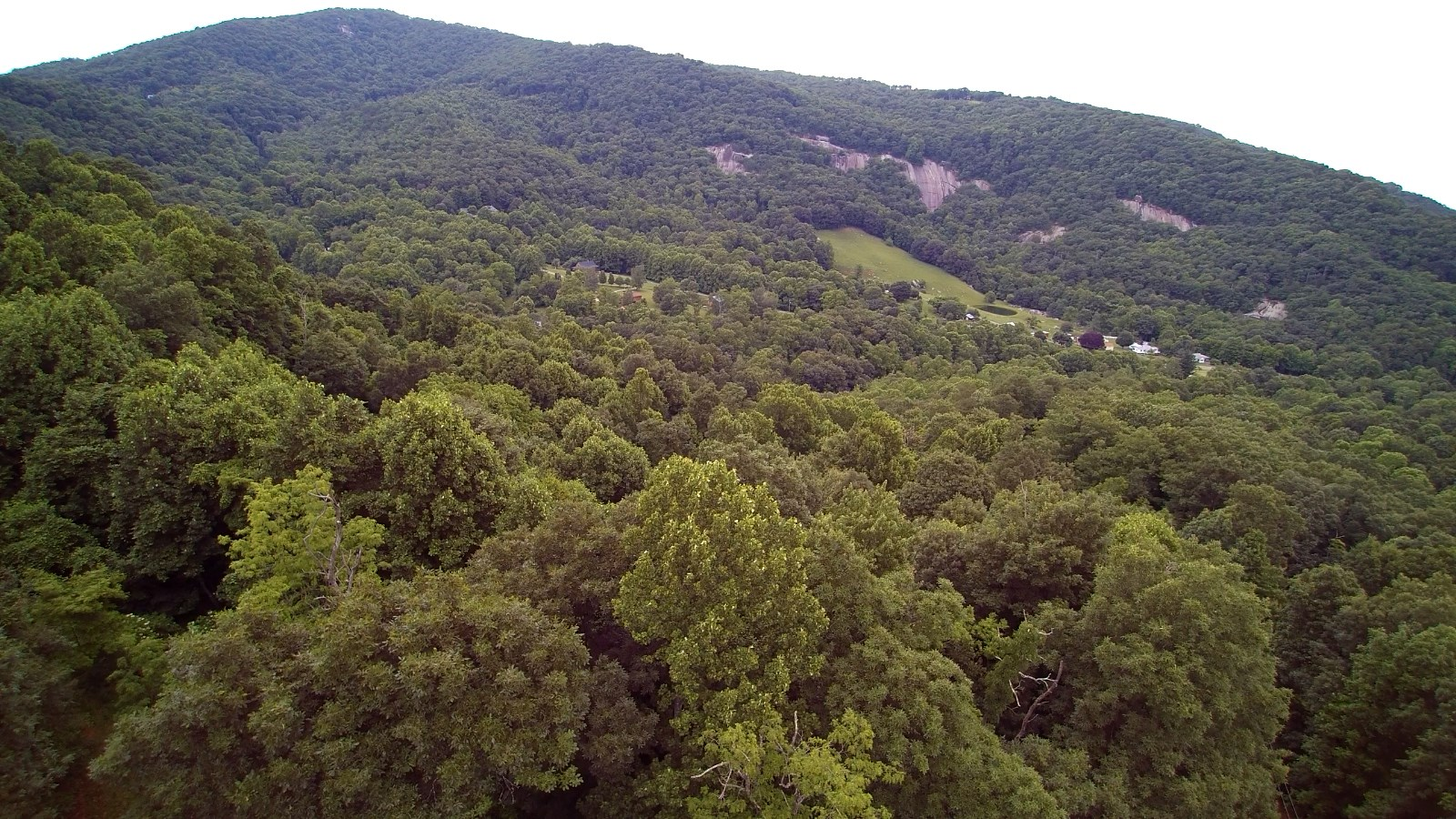 10.3 acres with Wonderful Views of the Blue Ridge Mountains