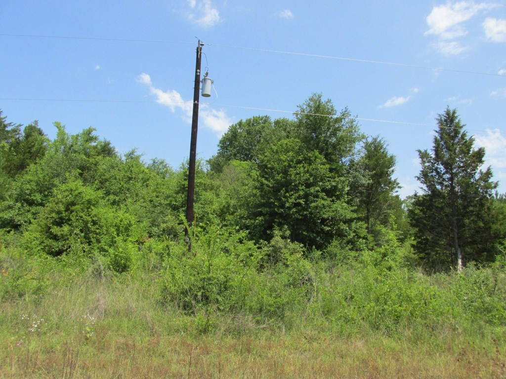 GREAT RESIDENTIAL BUILDING LOCATION INSIDE CITY LIMITS