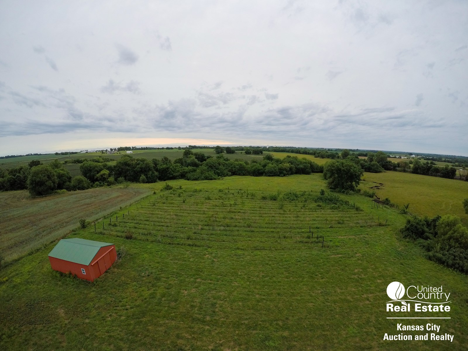 Vineyard Acreage For Sale in Centerview Missouri, Johnson Co