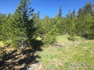 Fishing and Hunting acreage in Colorado Mountains
