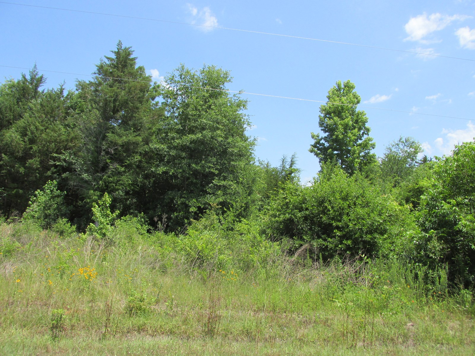 GREAT BUILDING LOCATION FOR RESIDENTIAL HOMESITE