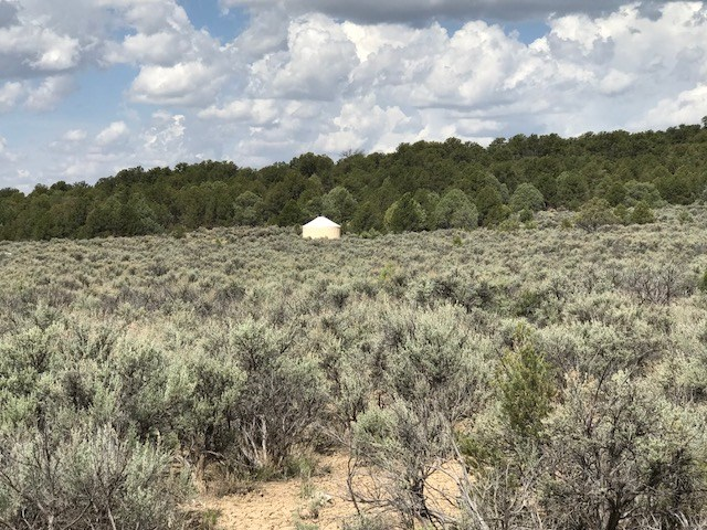 land For Sale in Northern NM Minutes From El Vado Lake