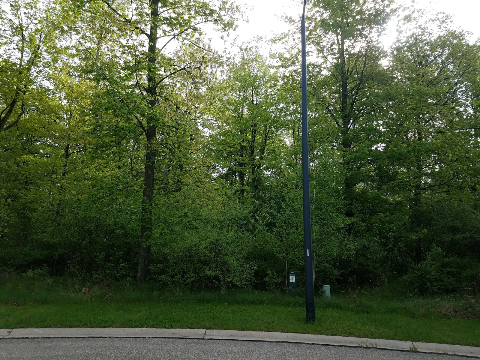 Vacant Lot for Sale in the City of Waupaca, Waupaca Co, WI