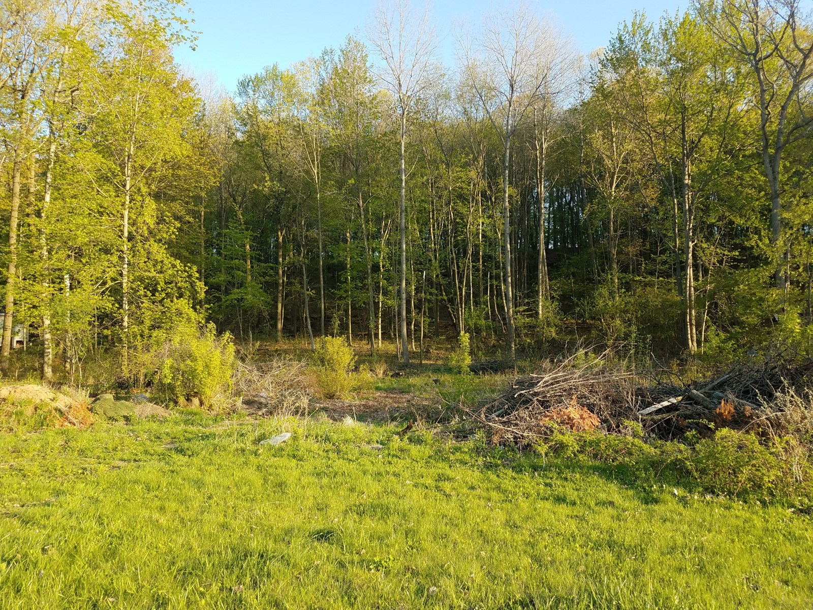 Vacant Lot for Sale in Waupaca County, Waupaca, WI