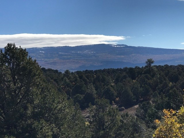 Beautiful Mountain Property Located just East of T A NM