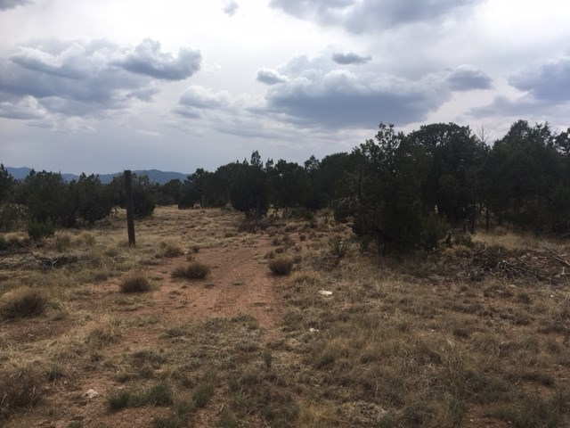 Wooded Lot For Sale in Central New Mexico Home Site