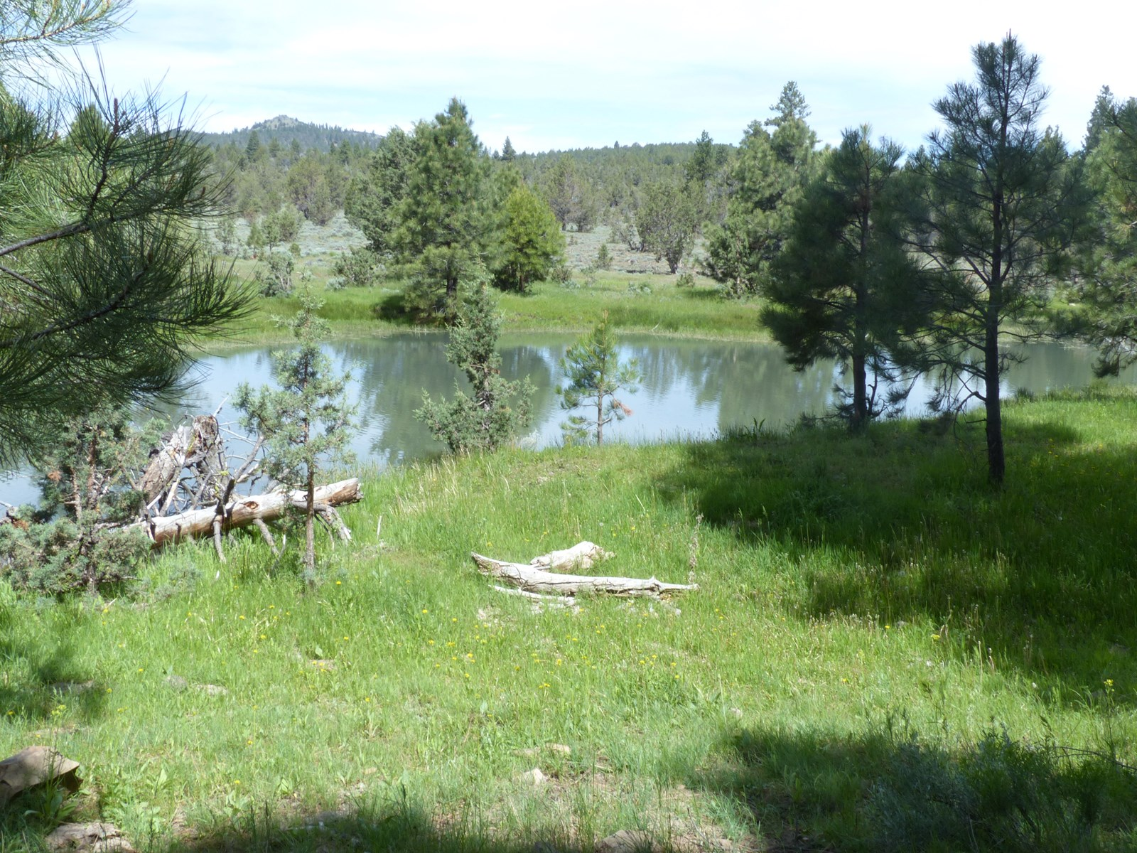 EASTERN OREGON HUNTERS OASIS - MALHEUR FOREST