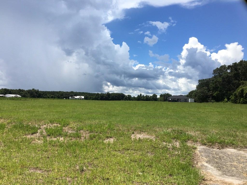 BUILD YOUR DREAM HOME! Mistletoe Subdivision - Trenton, FL