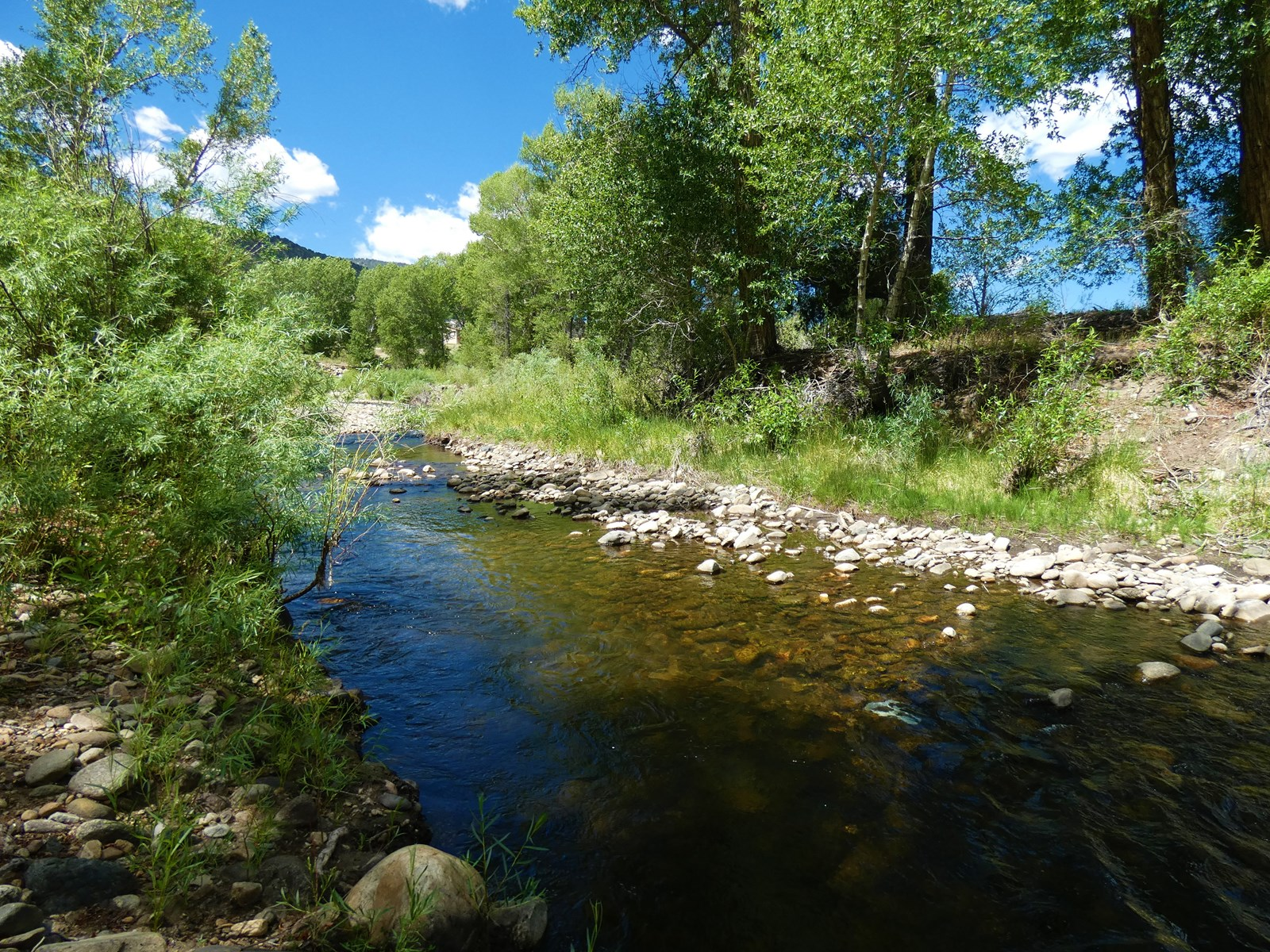 Riverfront Property Near Salida, CO-1122 Little River Lane